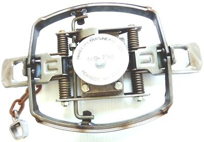AFEC0F5A-E90D-4207-AF53-E241C7F1EEB6.jpeg