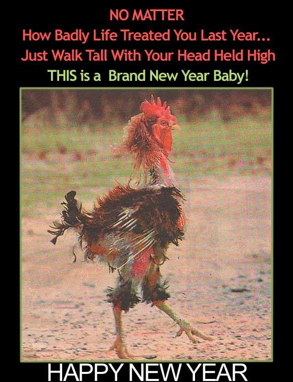 Happy new year the leading glock forum and community b22560e2b68319029e177a49c948ea2c chicken humor chicken boyg m4hsunfo