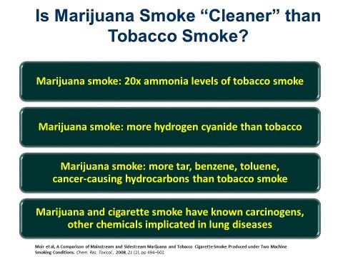Bertha Madras Presentation - 4 - Marijuana vs Tobacco.jpg