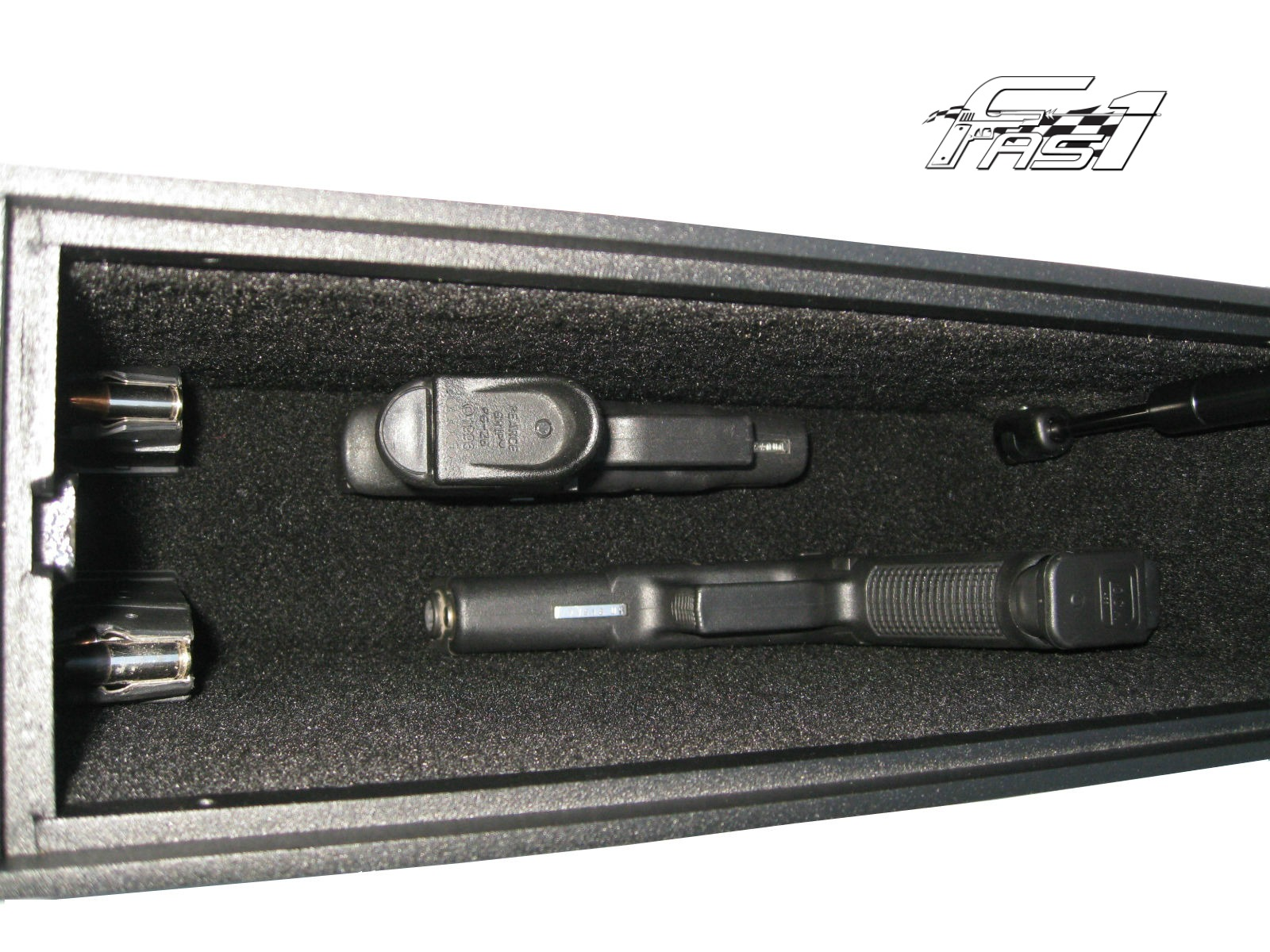 FAS1-Magnum Inside Extras Logo.jpg