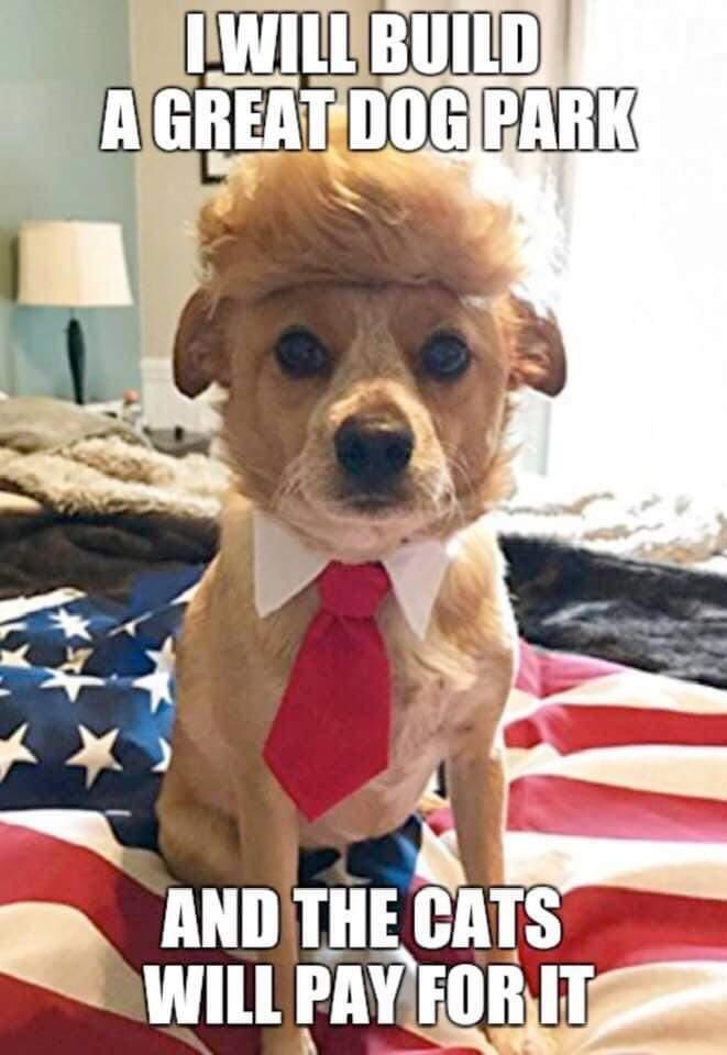 trump dog.jpeg